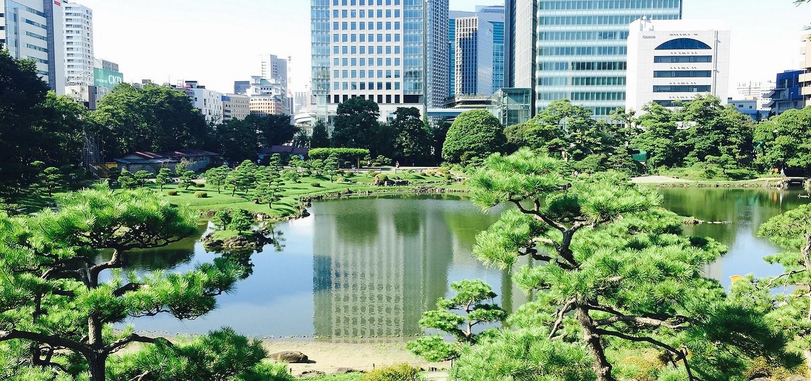 Ogród w parku w Tokyo